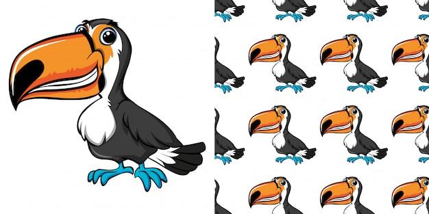 Padrão sem emenda com pássaro tucano selvagem