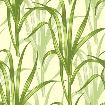 Padrão sem emenda com plantas medicinais