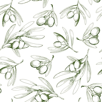 Padrão sem emenda com ramo de oliveira. desenhado à mão