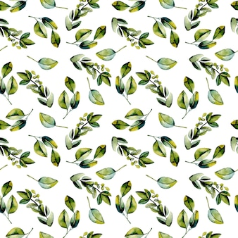 Padrão sem emenda com ramos de louro verde aquarela