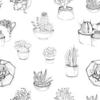Padrão sem emenda com várias mão desenhada suculentas e cactos em vasos de plantas.