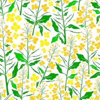 Padrão sem emenda conjunto de canola. folha verde vintage semente flor amarela plantação de primavera
