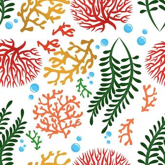 Padrão sem emenda de algas e corais