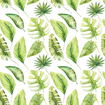 Padrão sem emenda de aquarela tropical verde folhas de monstera, banana e palmeiras, pintados à mão isolado