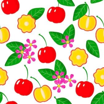 Padrão sem emenda de desenho vetorial com cereja de barbados, malpighia emarginata ou frutas exóticas de acerola, flores e folhas