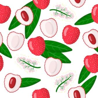 Padrão sem emenda de desenho vetorial com folhas, flores e frutas exóticas chinesas de litchi chinensis ou lichia