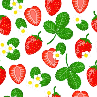 Padrão sem emenda de desenho vetorial com fragaria ananassa ou morango, frutas exóticas, flores e folhas de jardim