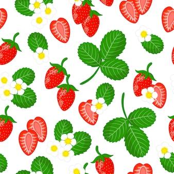 Padrão sem emenda de desenho vetorial com fragaria vesca ou frutas exóticas de morango silvestre, flores e folhas
