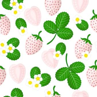 Padrão sem emenda de desenho vetorial com morangos brancos ou frutas exóticas pineberry, flores e folhas