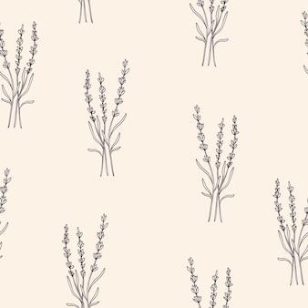 Padrão sem emenda de flor de lavanda desenhada à mão