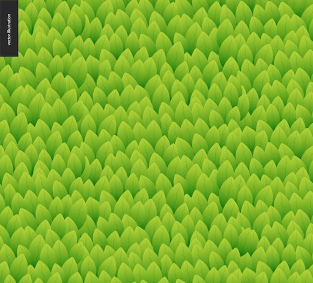 Padrão sem emenda de folhagem. padrão desenhado de mão verde vetor sem costura catroon de mão