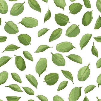 Padrão sem emenda de folhas de maçã verde