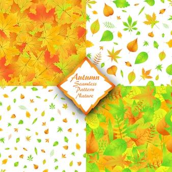 Padrão sem emenda de folhas de outono de natureza