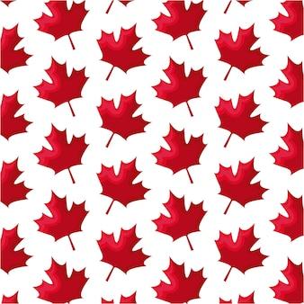 Padrão sem emenda de folhas maple canadá