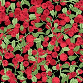 Padrão sem emenda de lingonberry. detalhada mão desenhados ramos com bagas. mão colorida ilustrações desenhadas.