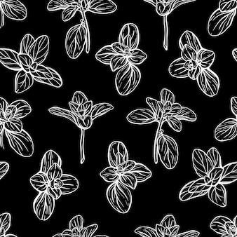 Padrão sem emenda de manjericão. ervas italianas. um raminho de manjerona. o manjericão é um tempero perfumado e perfumado. ilustração desenhada à mão