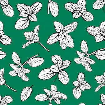 Padrão sem emenda de manjericão raminho de erva italiana de manjerona é um tempero perfumado e perfumado h ...