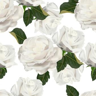 Padrão sem emenda de rosa branca