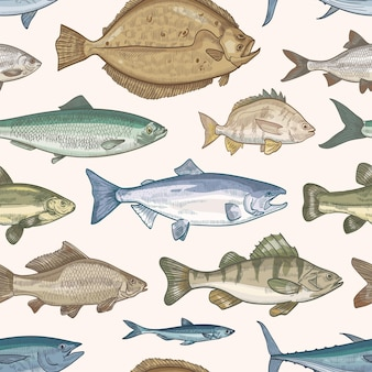 Padrão sem emenda elegante com diferentes tipos de peixes
