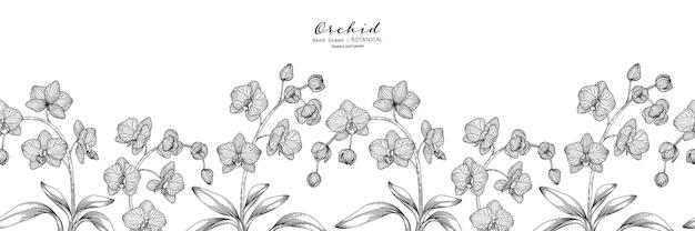 Padrão sem emenda flor e folha de orquídea mão desenhada ilustração botânica com arte de linha.
