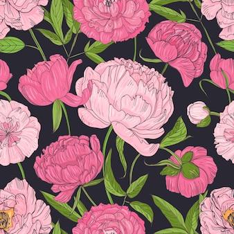 Padrão sem emenda natural com peônias rosa florescendo em fundo preto.