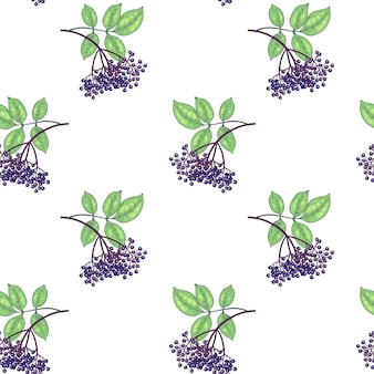 Padrão sem emenda. os ramos com folhas e frutos de sabugueiro em fundo branco. ilustração para embalagem, papel, papel de parede, tecido, matéria têxtil, embalagem. Vetor Premium