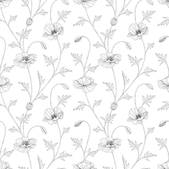 Padrão sem emenda papoula floral mão ilustrações desenhadas com arte em fundo branco.