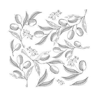 Padrão sem emenda preto e branco com folhas de oliveira abstratas e bagas em branco