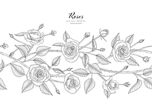 Padrão sem emenda rosas flor e folha mão desenhada ilustração botânica com arte de linha.