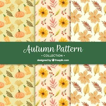 Padrões de outono com flores de aguarela e abóboras
