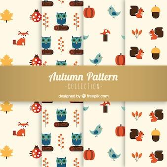 Padrões de outono com raposas, corujas, cogumelos e esquilos