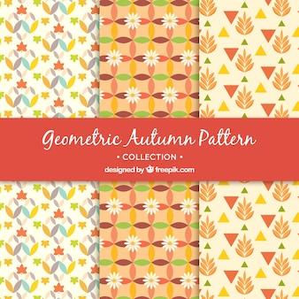 Padrões geométricos do outono