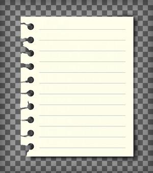 Página de livro de nota pautada em branco com borda rasgada