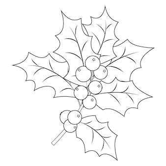 Página de livro para colorir para adultos e crianças. ramo de natal holly berry com folhas. ilustração vetorial.