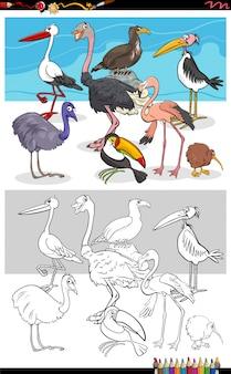 Página do livro para colorir do grupo de personagens de animais de pássaros engraçados
