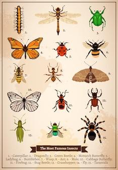 Página do livro vintage de insetos
