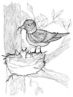 Página para colorir com desenho de pássaros