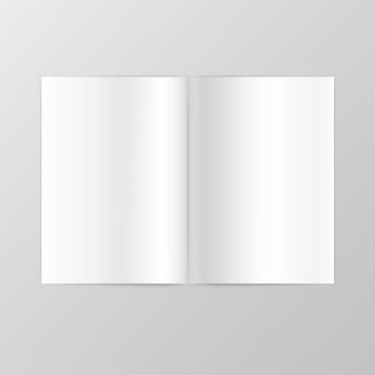 Páginas duplas em branco espalhadas no fundo branco