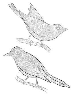 Páginas para colorir para adultos. passarinhos selvagens para com padrão no corpo pássaro sentado no galho
