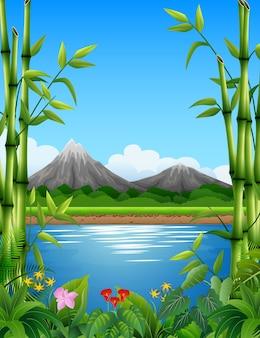 Paisagem com árvores de bambu no lago e montanhas