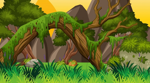 Paisagem com bosques no parque