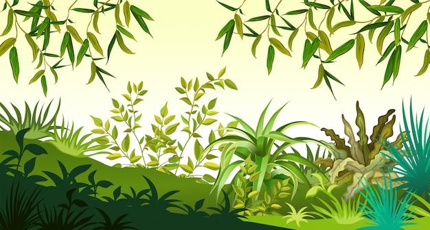 Paisagem com folhas de árvores e grama.