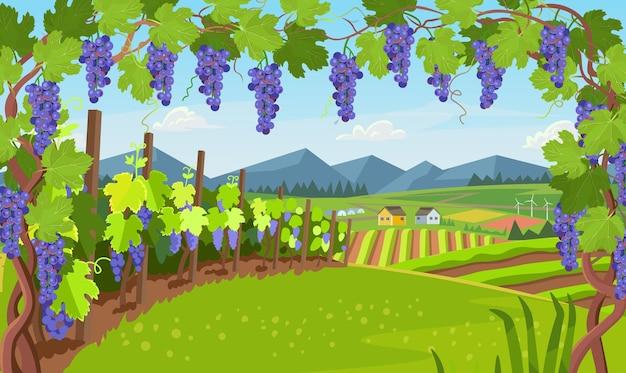 Paisagem com vinha. aldeia com campos de estufas e uvas em primeiro plano.