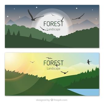 Paisagem da floresta com águias banners