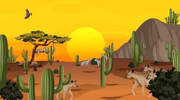 Paisagem da floresta do deserto com cena do pôr do sol com animais selvagens