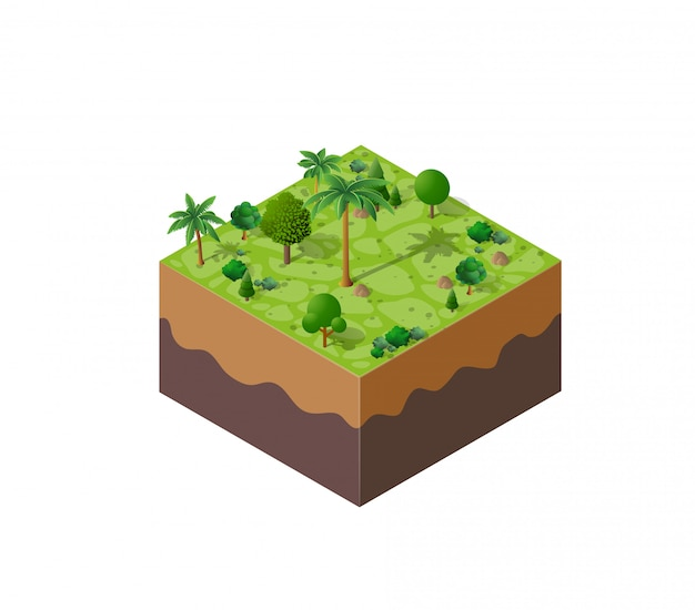 Paisagem da floresta natureza