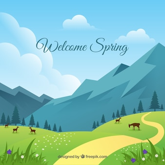 Paisagem da primavera