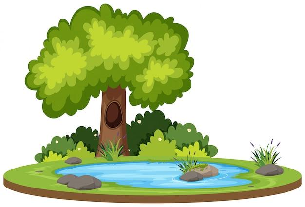 Paisagem de água natural isolada
