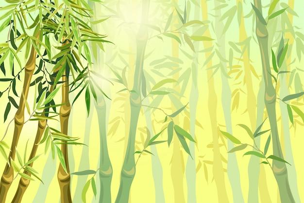 Paisagem de caules e folhas de bambu.