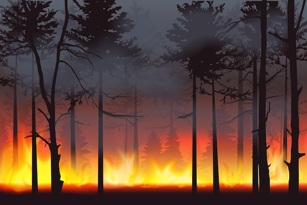 Paisagem de desastre de incêndio florestal de silhueta realista